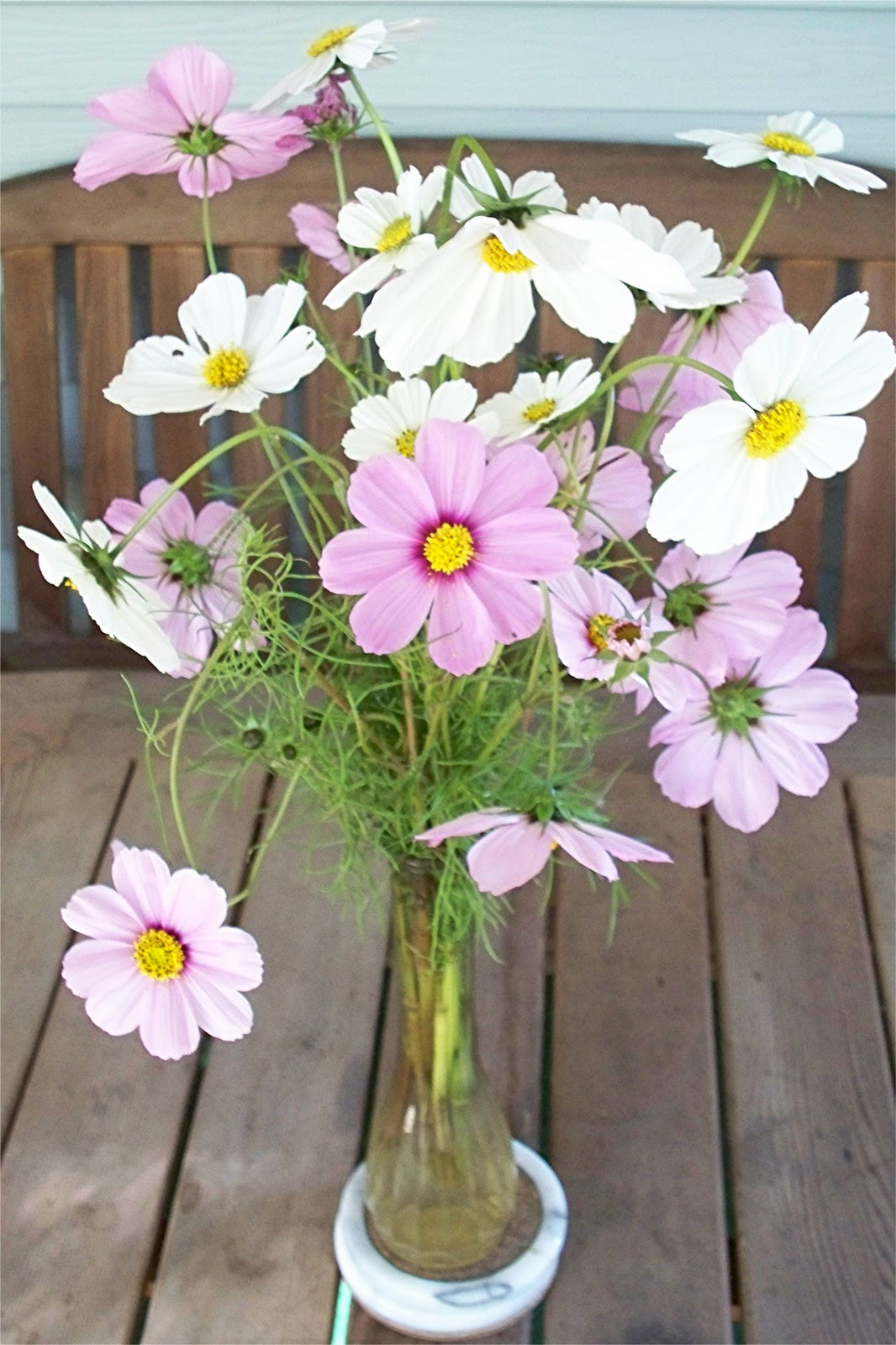Old Fashioned Cosmos Flower Bouquet Ideas - Best Evening Gown ...