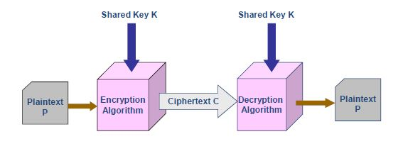 Cryptography - Network Security | BankExamsToday