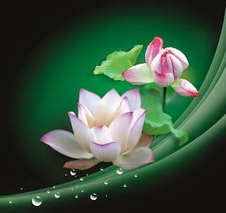 Mười cách tạo phước báu (Ajahn Suchart)