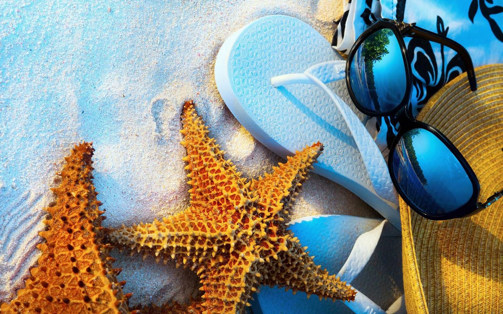 Zonnebril, hoed, slippers en zeesterren op het strand