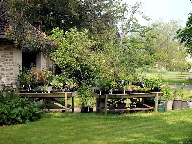 naturaleza y rutas en Lacock Inglaterra