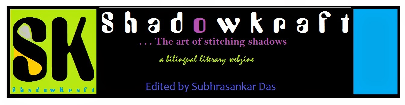 ShadowKraft....the art of stitching shadows