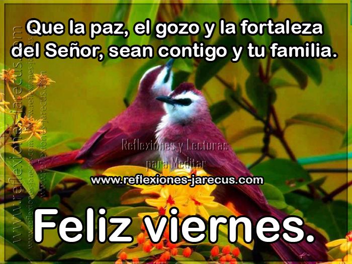Feliz viernes Que la paz, el gozo y la fortaleza del señor, sean contigo y tu familia