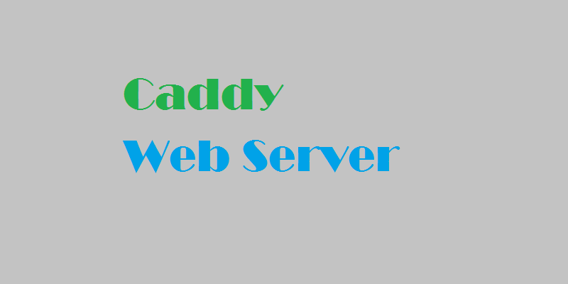 How To Host a Website using Caddy on Ubuntu 16 04 - TECHSUPPORT