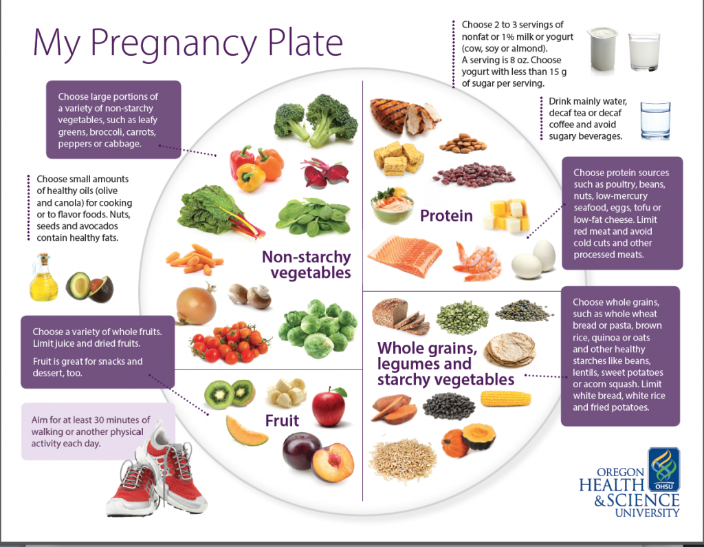 My Pregnancy Plate
