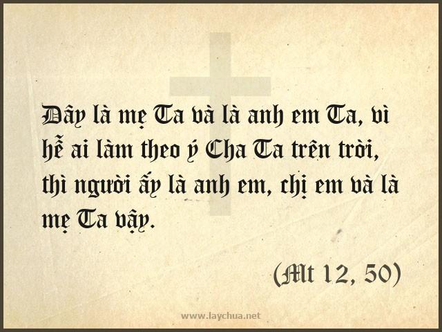 Đây là mẹ Ta và là anh em Ta, vì hễ ai làm theo ý Cha Ta trên trời, thì người ấy là anh em, chị em và là mẹ Ta vậy. (Mt 12, 50)