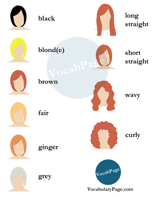Beauty Salon Vocabulary