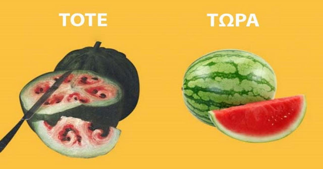 Δείτε πως ήταν στην πραγματικότητα τα φρούτα και τα λαχανικά πριν «βάλει το χέρι του» ο άνθρωπος