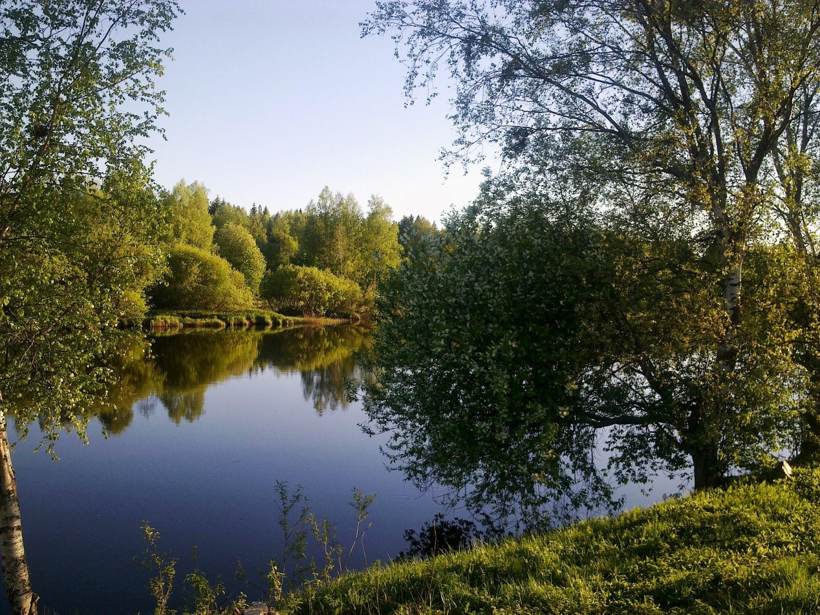 joki, penkkatie, Pyhäjoki, kesä