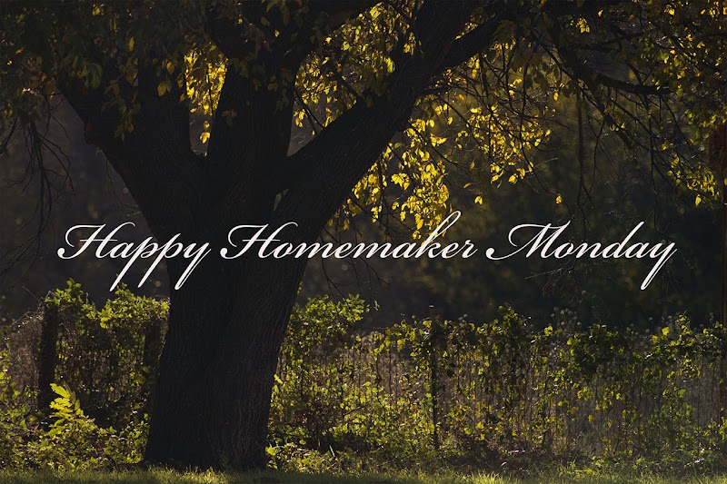 { Happy Homemaker Monday - 12/18/2017 }