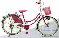 City Bike Evergreen H-1 Royal Princess 26 Inci