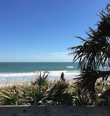 Canova Beach  - Florida
