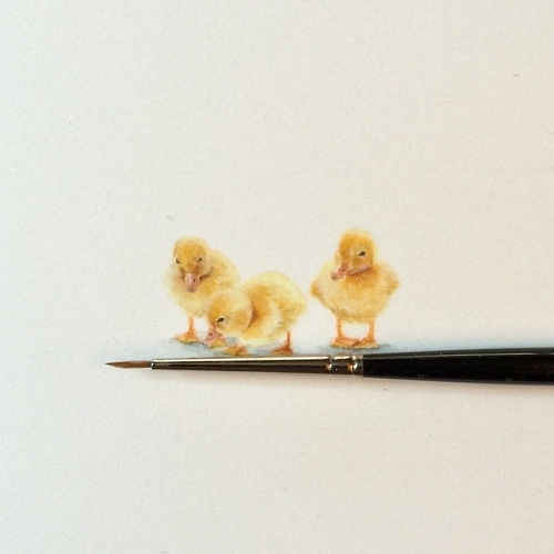 09-Chicks-Ducklings-Karen-Libecap-Star-Wars-&-other-Miniature-Paintings-and-drawings-www-designstack-co