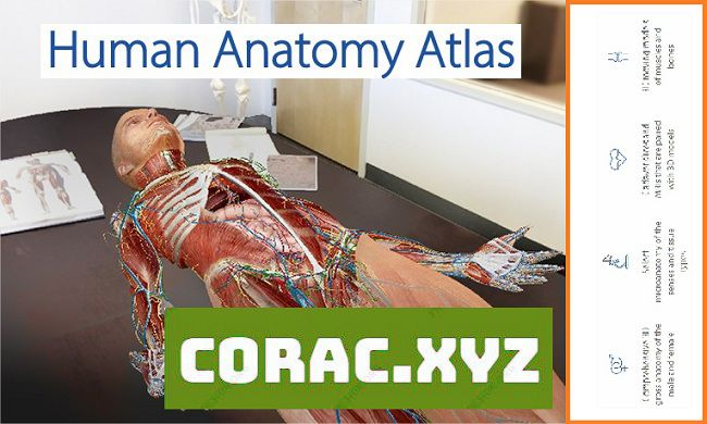 Human Anatomy Atlas full crack