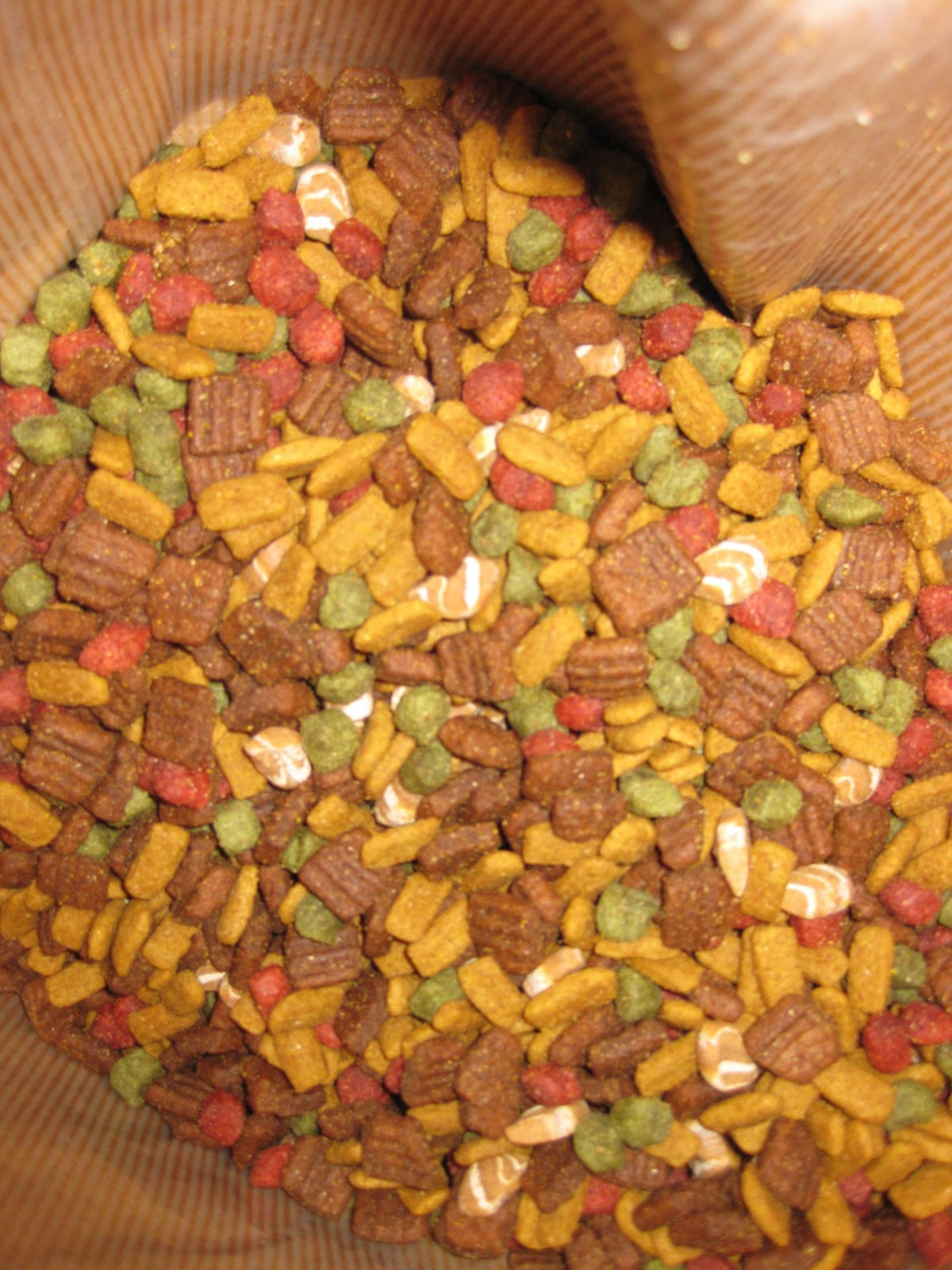 Bistro Dog Food
