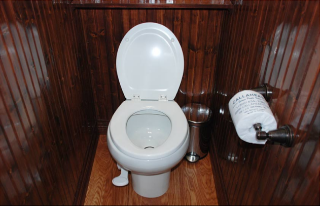 Private bathroom stalls with pedal flush porcelain toilets