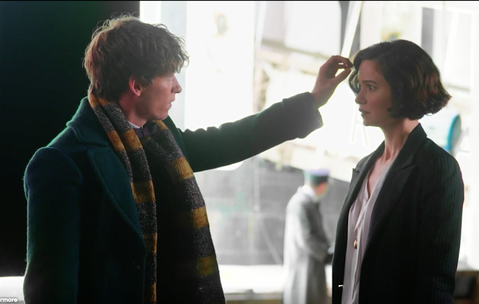 Relação entre Newt e Tina será uma construção lenta, revela Eddie