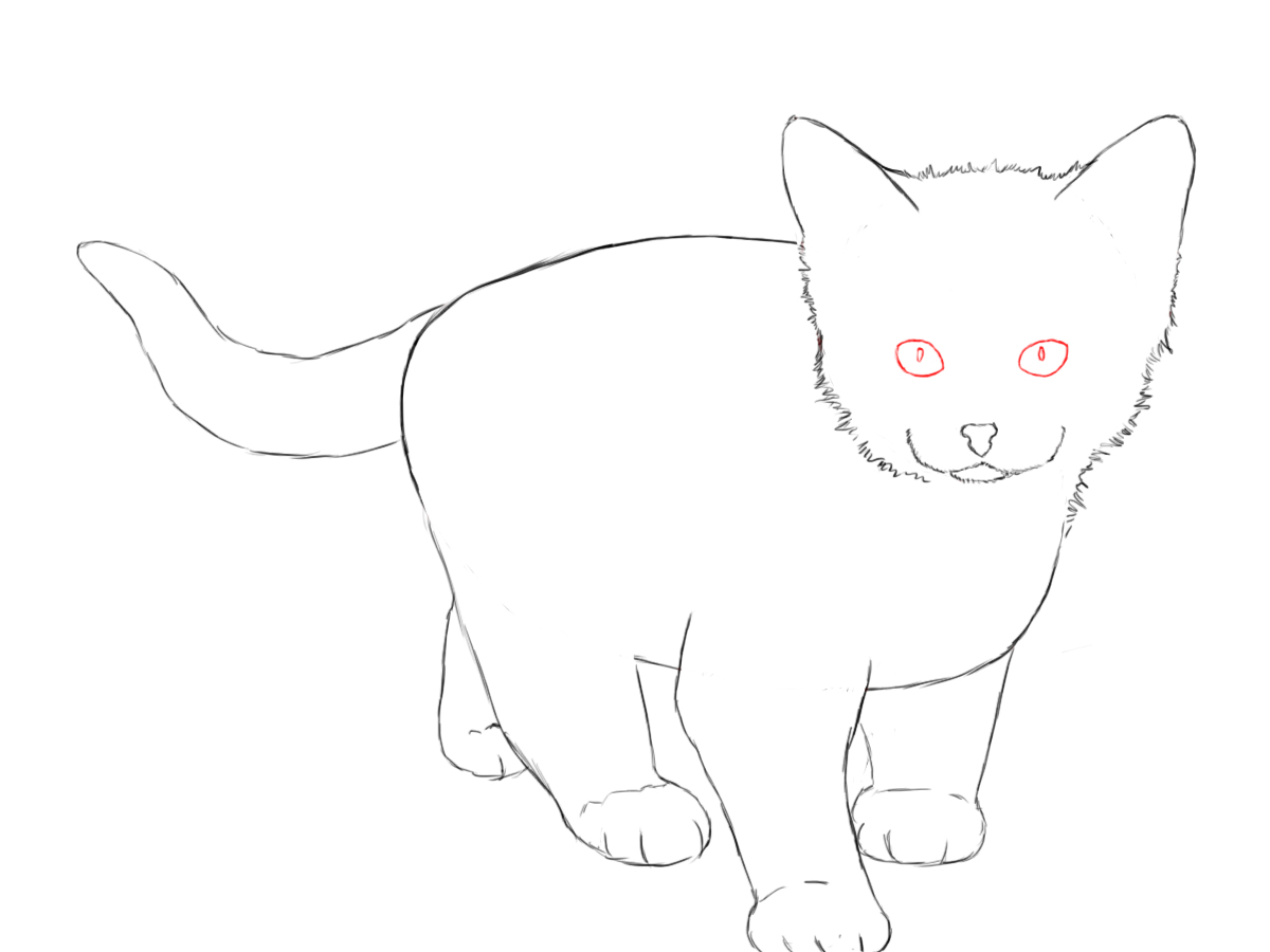 Draw A Kitten And Cat Step By Step