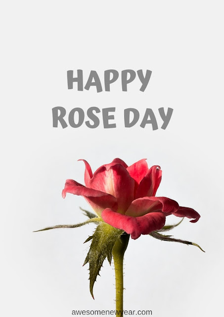 Rose-Day-Images-2019