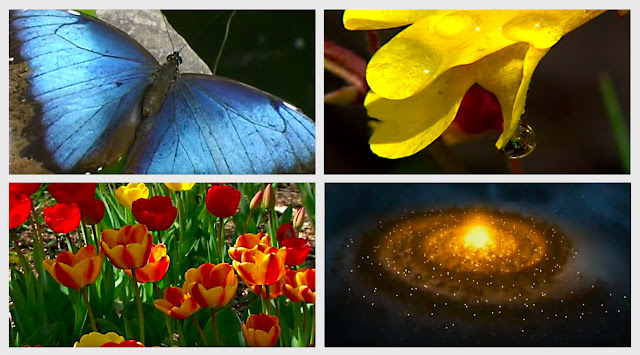 "Screen Captures From The Documentary ""God of Wonders"""