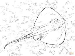 Cute Stingray Coloring Pages For Print Free Download