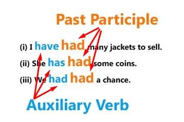 Have, has dan had sebagai Auxiliary verb dan lexical Verb | Pelg-grammar