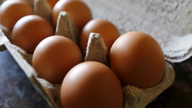 U.S. 200 million eggs over salmonella fears