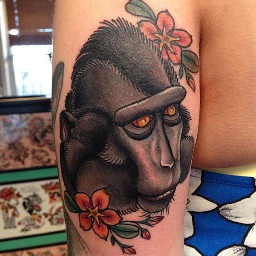 Macaco da antiga escola