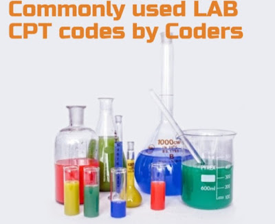 Commonly Used Lab CPT codes by Pathology coders