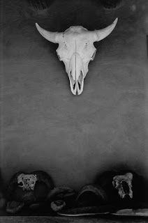 Georgia O'Keeffe Skull in Patio Portal, Ghost Ranch New Mexico 1972