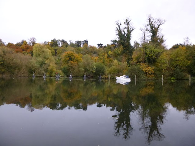 http://bugsandfishes.blogspot.co.uk/2015/11/an-autumn-walk-along-thames.html
