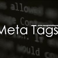 Apa itu Meta Tags ? pengertian dan penggunaan dalam template