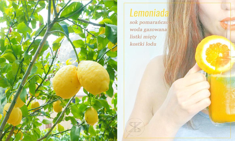 cytryny, lemoniada cytrynowa, piję lemoniadę bez cukru