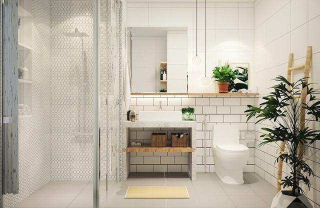 Phòng tắm sang trọng với vách kính và cây xanh