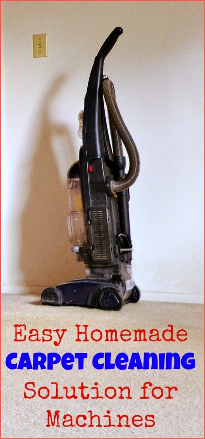 Awesome Real Food Recipes: Easy Homemade Carpet Cleaning ...
