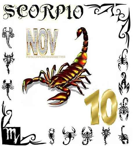 1000  images about So Scorpio on Pinterest | Birthdays, Births and ...