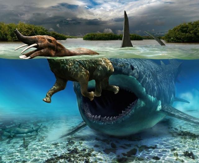 megalodon-vs-mammoth