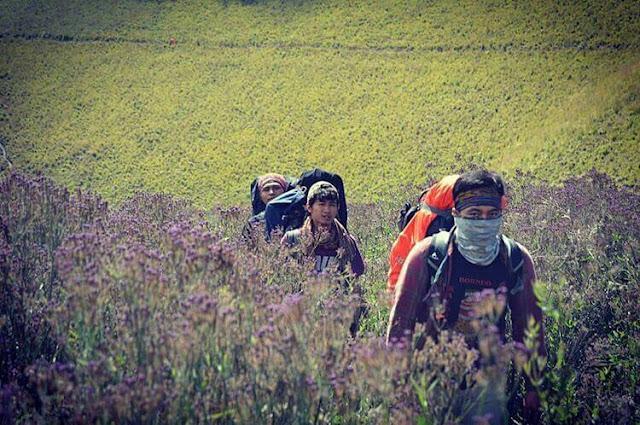 foto oro oro ombo gunung semeru