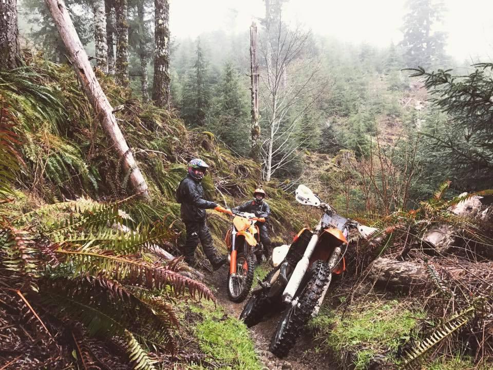 Tillamook State Forest Blog 2017