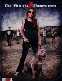 Pit Bulls and Parolees 3 | Bmovies