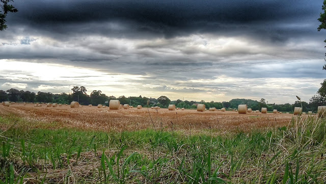Project 366 2016 day 217 - Norfolk hay bales // 76sunflowers