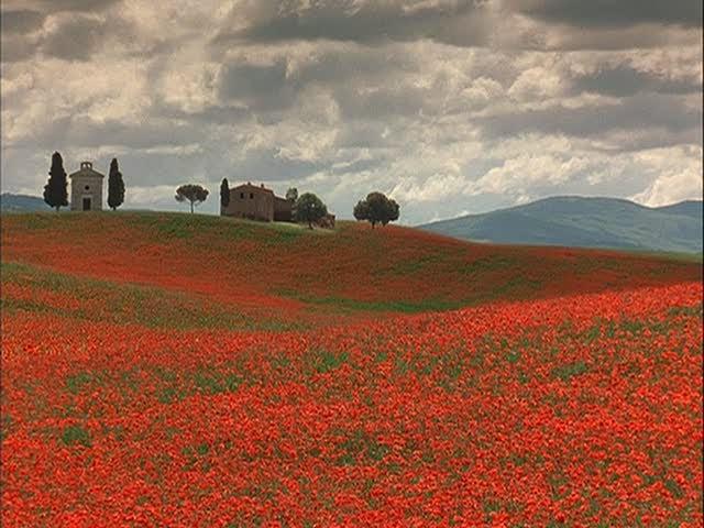 """Sob o Sol da Toscana"""