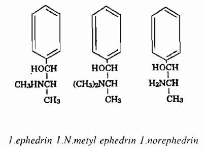 Thành phần hóa học Ma Hoàng - Ephedra sinica; Ephedra equisetina; Ephedra intermedia - Nguyên liệu làm thuốc Chữa Cảm Sốt