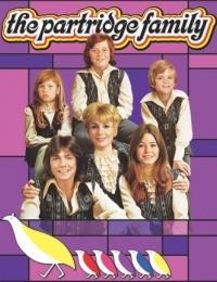 The Partridge Family 1   Bmovies