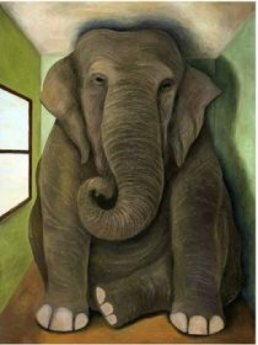 Secret Stories Phonics Secrets— There's an Elephant in Your Classroom!