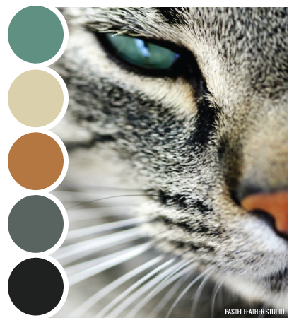 CAT TINT Color Palette P STEL FEATHER STUDIO