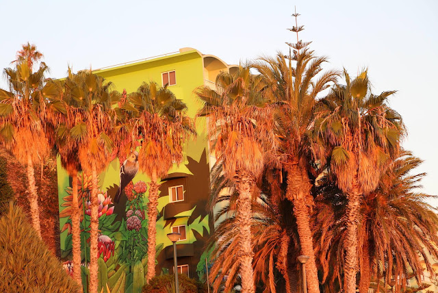 Pestana Bay hotel in Praia Formosa