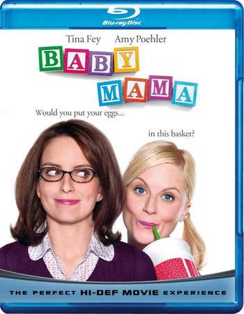 Baby Mama (2008) Dual Audio Hindi 720p BluRay