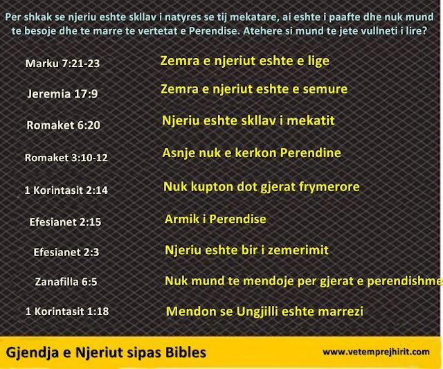 gjendja e njeriut sipas Bibles, shthurja dhe prishja e njeriut, vullneti i lire, kalvinizimi, teologjia e reformuar,