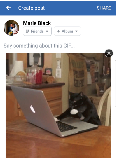 Share Gif On Facebook<br/>